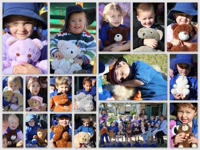 2014_07 Kindy teddy Bear